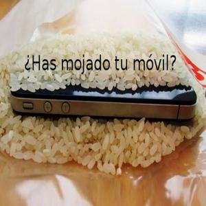 truco del arroz
